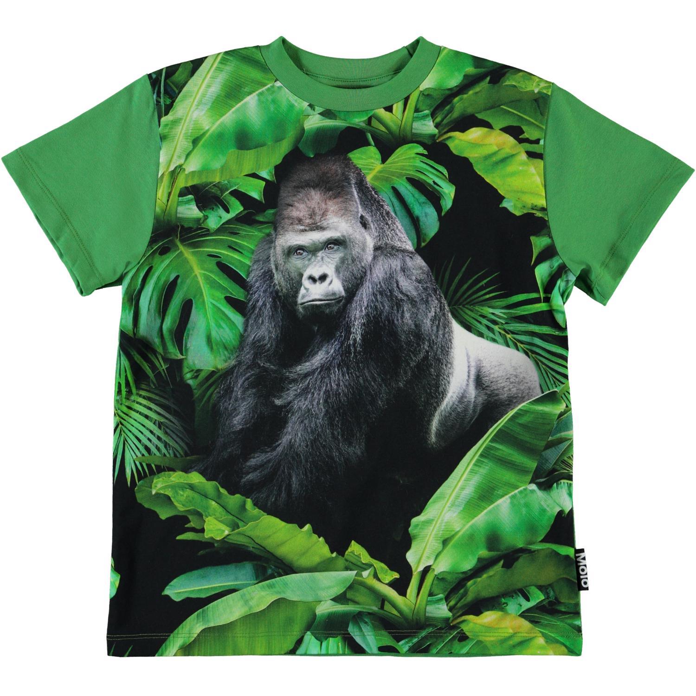 Molo roxo SS t-shirt