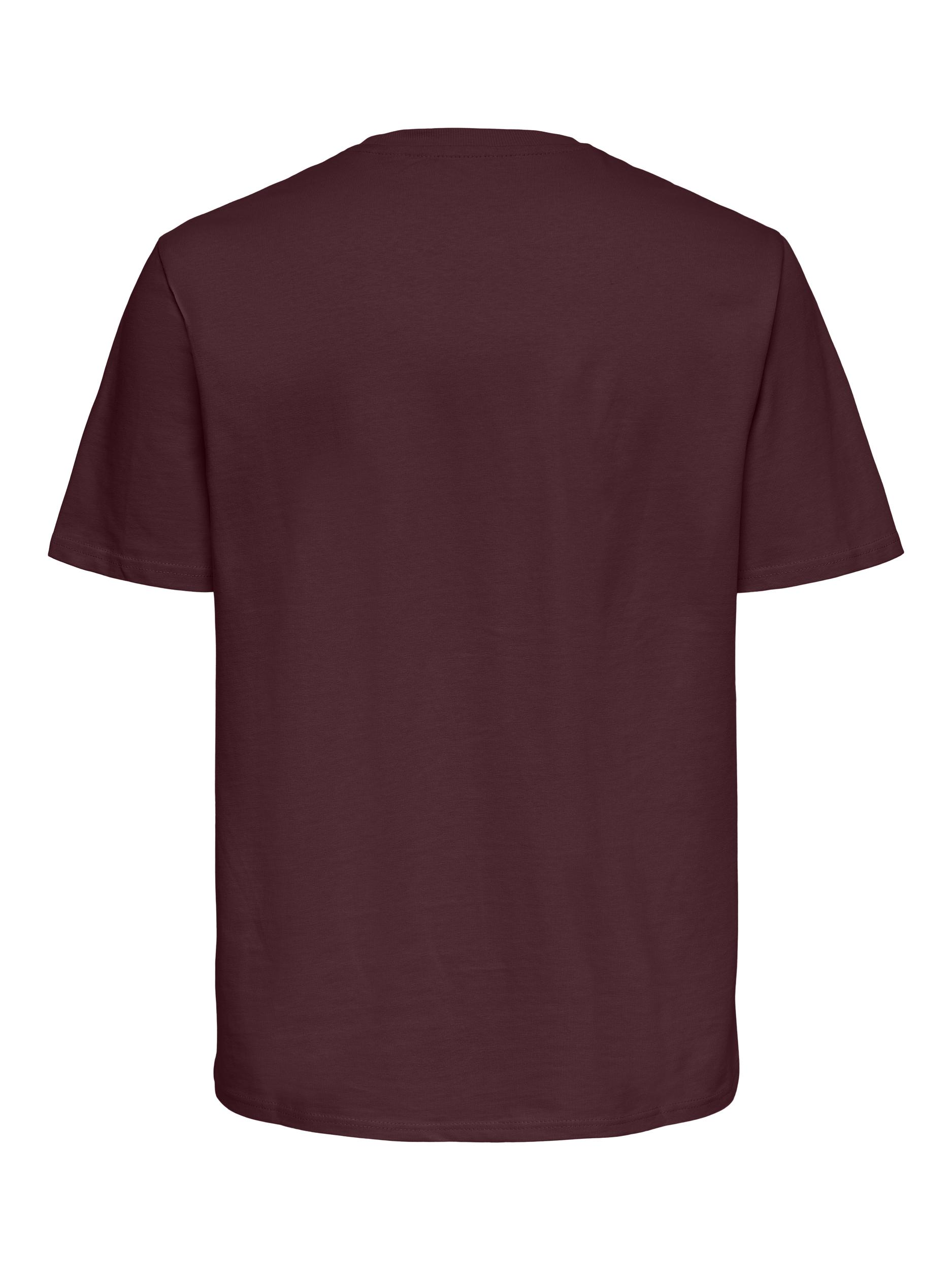 Only & Sons Anel Life SS t-shirt, fudge, xx-large