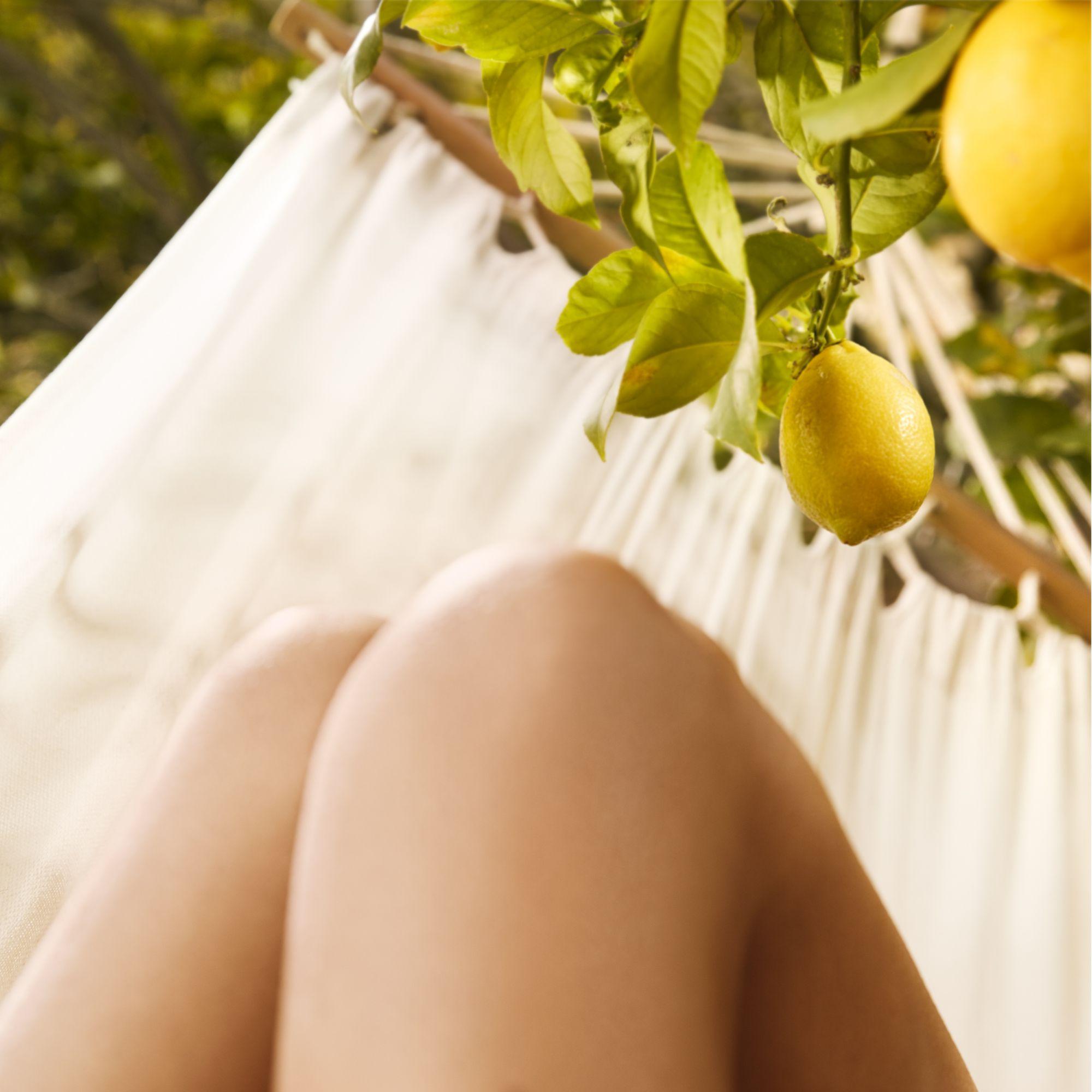 Maison Margiela Replica Under Lemon Trees EDT, 100 ml