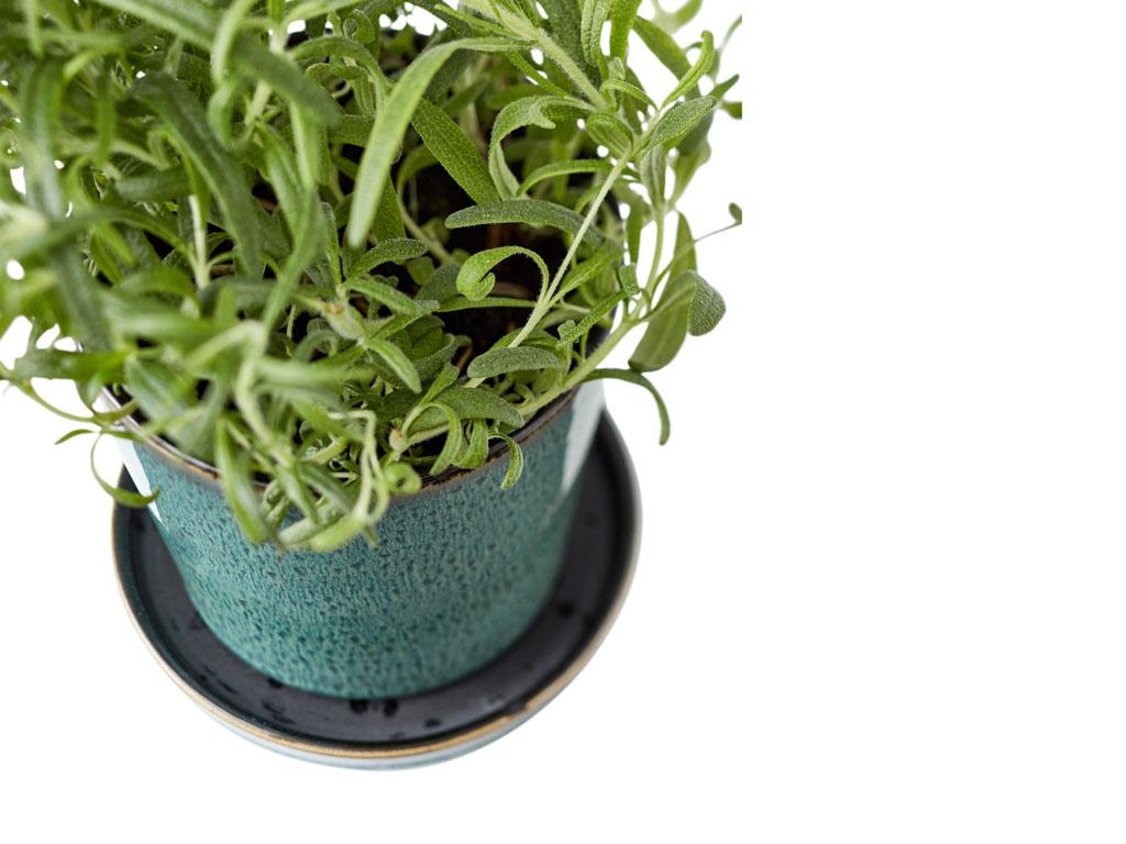 Bitz skjuler med underskål, 10 cm, grøn/sort