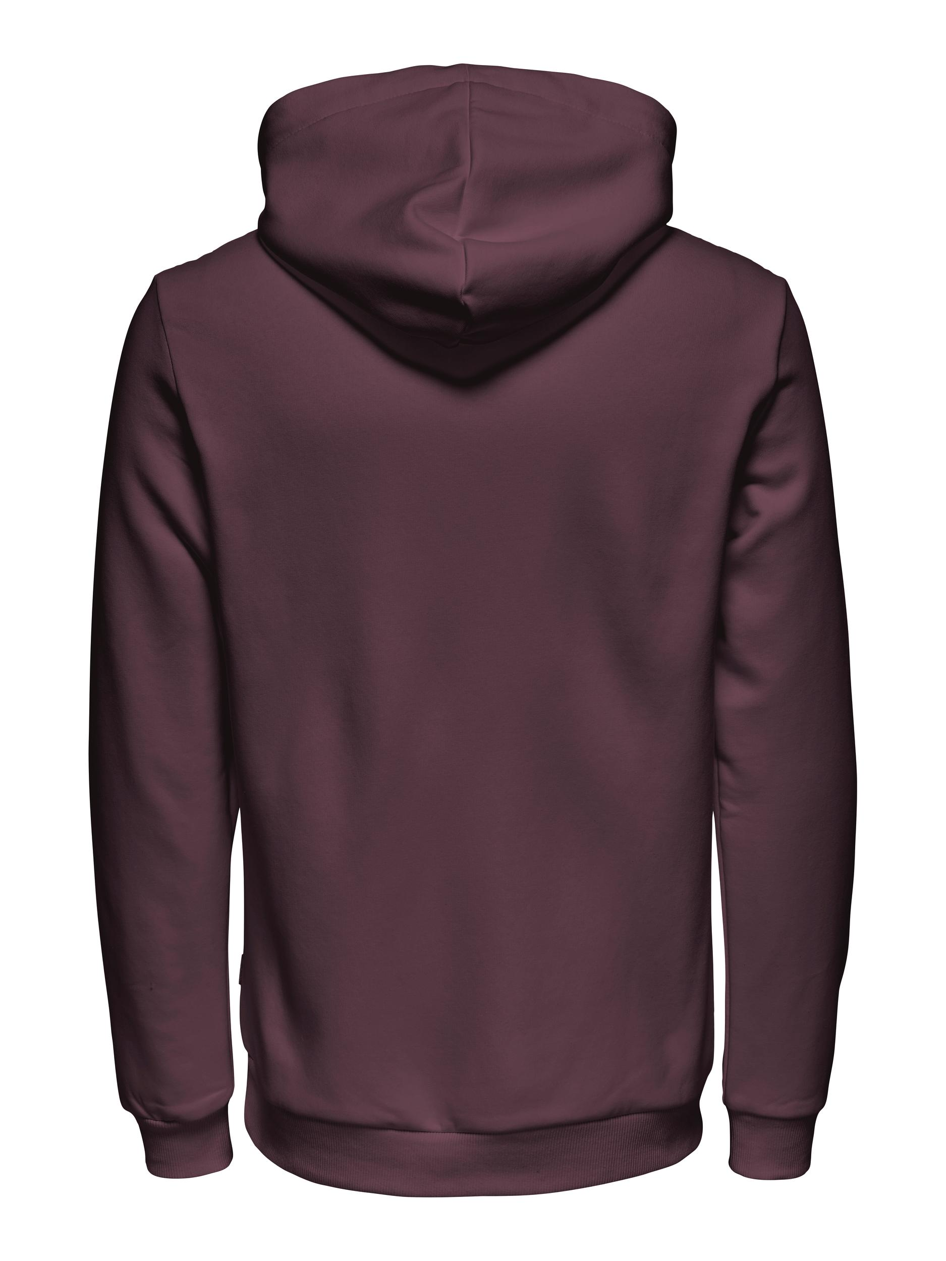 Only & Sons Ceres Life hoodie, fudge, small