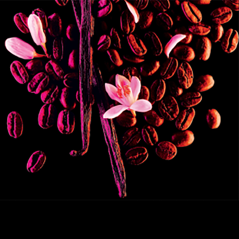Yves Saint Laurent Black Opium EDP, 150 ml